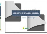 Projetos Educacionais e Autoria de Materiais Didáticos