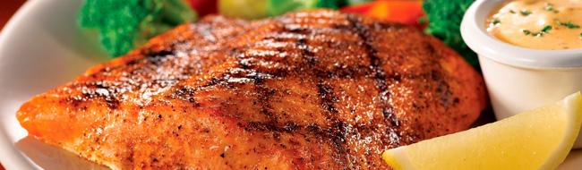 É arriscado comer salmão?