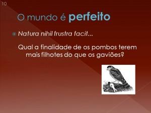 Por que os pombos têm ninhadas grandes, ao contrário dos gaviões?