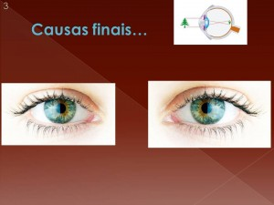Na base do aristotelism o estão as causas finais: qual a finalidade dos olhos?